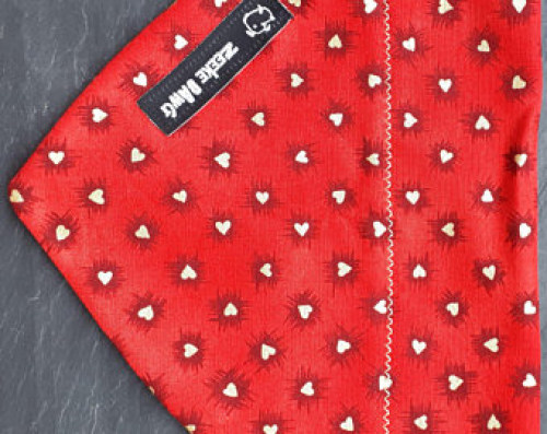 Valentine Day Dog Bandana (collar through)