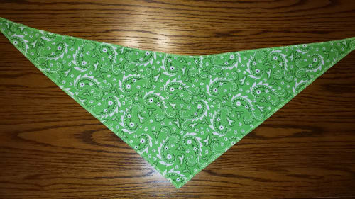 Tie-On Bandana Green