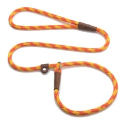 Orange/Yellow Leash