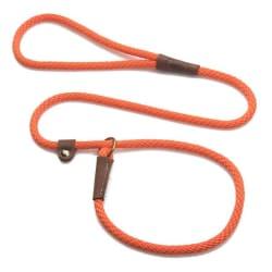 Bright Orange Leash