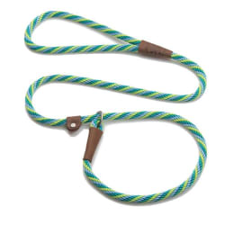 Green and Light Green Leash