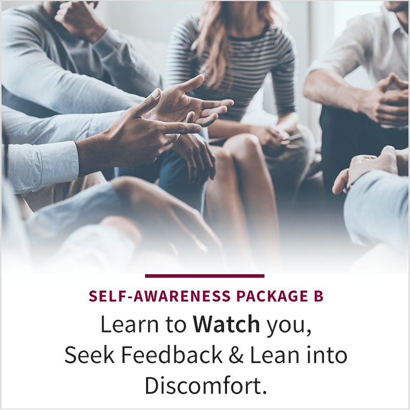 Self-Awareness Podcast Package B