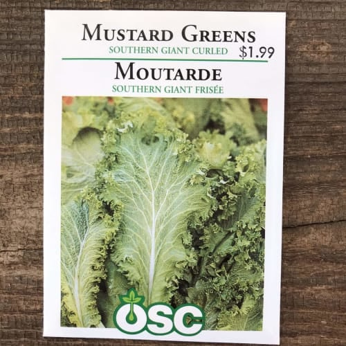 Southern Giant Curled Mustard Greens Seeds