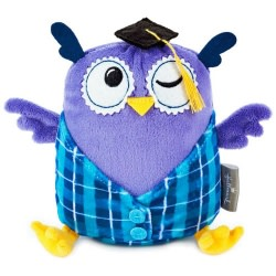 Graduation Owl Stuffed Animal Gift Card Holder