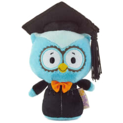 itty bittys® 2020 Blue Graduation Owl Stuffed Animal