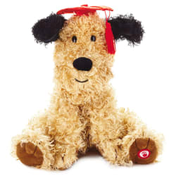 2020 Graduation Pup Musical Stuffed Animal
