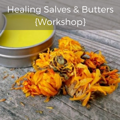 Healing Salves Workshop