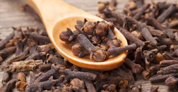 Clove Essential Oil | Organic