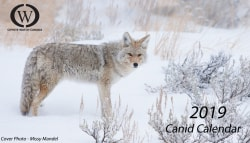 Canid Calendar 2019 Special Ten Year Anniversary 2nd Edition