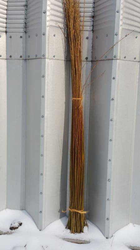 Dormant Rods (Bundle)