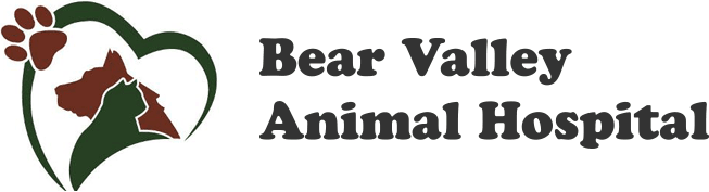 Bear Valley Animal Hospital