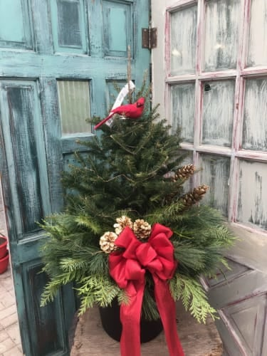 Christmas Tree Top Workshop