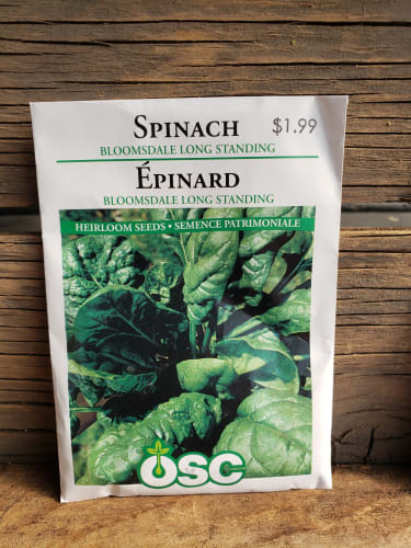 Seeds - Spinach (Bloomsdale long standing)