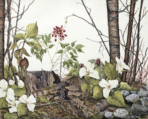 Grace - Original Watercolour